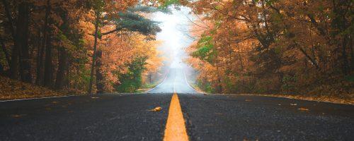 Pagini de asfalt