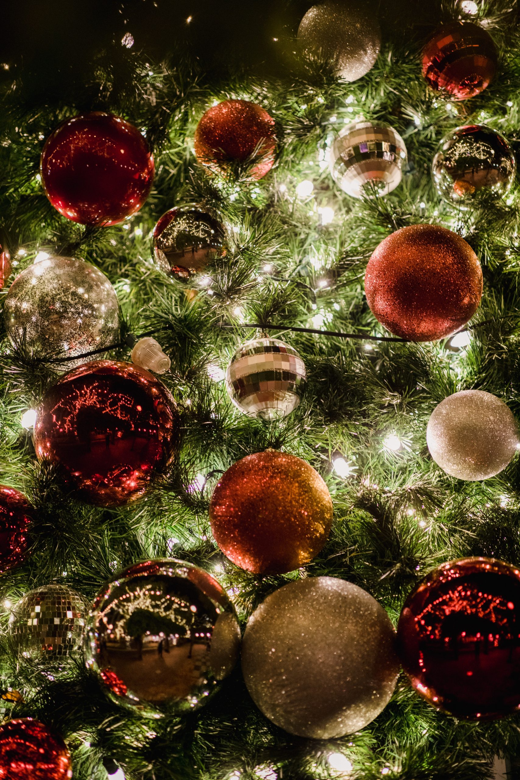 assorted-color christmas baubles in tree